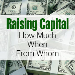 Raising Capital: How Much, When, From Whom?