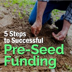 Pre-Seed Funding Steps